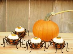 Pumpkin-Pecan Cupcakes with Baileys Cream Cheese Frosting are a nutty, sweet autumn treat. Moist spiced cake is topped by a rich (and slightly boozy) cream cheese frosting. These are perfect little treats for tricksters of Pumpkin Pie Mix, Canned Pumpkin, Pumpkin Spice, Spider Cupcakes, Pumpkin Cupcakes, Fall Treats, Halloween Treats, Cookbook Shelf, Baileys Irish Cream