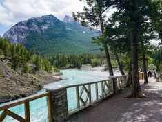 The Banff Bow River trail is one of the best hiking walks near Banff. A classic walk along the river, this easy trail is perfect for beginners.