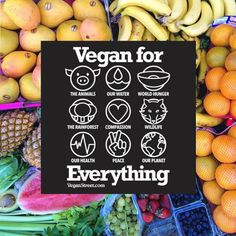 vegan | Tumblr