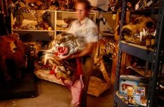 PLEASE SIGN PETITION!!  Demand Harsh Punishment for Exotic Animal Poachers in Vietnam