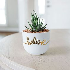 Idea Of Making Plant Pots At Home // Flower Pots From Cement Marbles // Home Decoration Ideas – Top Soop Painted Flower Pots, Painted Pots, Succulent Landscaping, Planting Succulents, Succulent Plants, House Plants Decor, Plant Decor, Flower Pot Crafts, Vertical Garden Diy