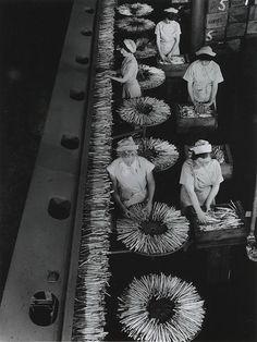 Asparagus Line, Harvest Foods, Cheltenham, Melbourne Victoria, 1957 by Wolfgang Sievers Australian Photography, Australian Art, Fine Art Photography, Great Photos, Old Photos, Vintage Photos, Harvest Foods, Victoria Australia, Melbourne Victoria