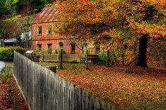 Autumn Splendour at Windsor House, Walhalla by Christine Smith
