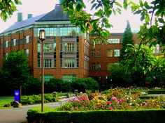A rose garden at the University of Washington.