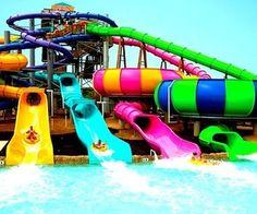 waterslides! who doesn't love waterslides??