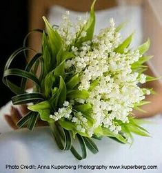Lily of the valley bouquet- Bouquet di mughetto Lily of the valley bouquet – 14 - Bride Bouquets, Bridesmaid Bouquets, Arte Floral, Lily Of The Valley, Bridal Flowers, Ikebana, Spring Wedding, Planting Flowers, Floral Arrangements