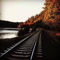 """Teddy Bear Cove in Bellingham WA. #fall #bham #bellingham #hiking #hikingadventures #king5 #kiro7 #teddybearcove #railway #traintracks #nature #waterfront"""