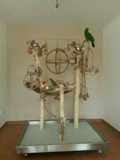 This is an amazing bird stand! I would love to get it in the future. Homemade Bird Toys, Diy Bird Toys, Parrot Stand, Bird Stand, Parrot Perch, Bird Perch, Bird Play Gym, Budgies, Parrots