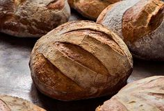 5-Minute Artisan Bread from Leite's Culinaria. Try making it in different styles such as a baguette.