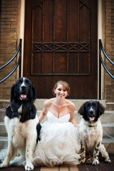 I can so see erin posing with Mr. Henry on her BIG day! Emily with Ollie too!