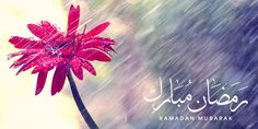 The first ten days of Ramadan: pure mercy