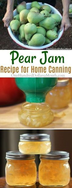 How to Make Pear Jam, Pear Jam Recipe, Pear Canning Recipes, Canning Pears, Jam Recipes (Homemade Butter Chicken) Canning Pears, Canning Tips, Home Canning, Canning Recipes, Canning Labels, Canning Jam Recipe, Pear Preserves, Pear Jam, Pear Relish