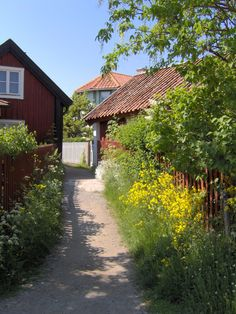 I LOVE Sandhamn, Stockholm skärgård.