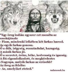 Two Wolves - which one do you feed? Two Wolves Story, The One You Feed, Great Quotes, Inspirational Quotes, Native American Wisdom, Wolf Quotes, Jealousy, Positive Affirmations, Quotations