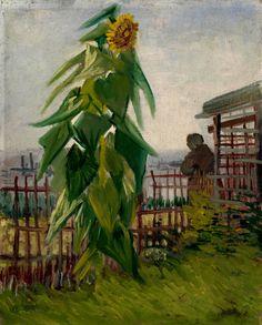 "dappledwithshadow: ""Vincent van Gogh - Allotment with Sunflower Paris, July 1887 oil on canvas, cm x cm Van Gogh Museum, Amsterdam (Vincent van Gogh Foundation) "" Vincent Van Gogh, Artist Van Gogh, Van Gogh Art, Van Gogh Museum, Art Van, Paul Gauguin, Henri Matisse, Claude Monet, Van Gogh Sunflowers"