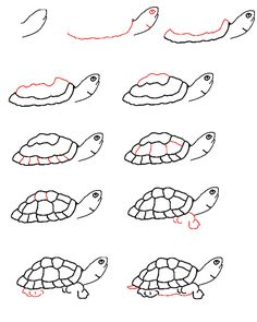 Image detail for -... learn to draw a turtle step by step back to learn to draw page 3