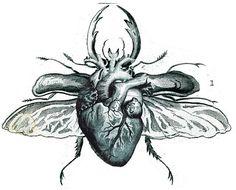 Coloring for adults-kleuren voor volwassenen Heart Tattoo, Sketches, Drawings, Anatomy Art, Anatomical Heart Art, Heart Illustration, Art, Heart Art, Dark Art