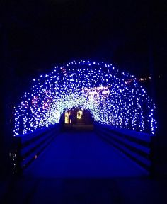 James Island Lights Fascinating Young Visitors Love Riding The Train At The Holiday Festival Of 2018