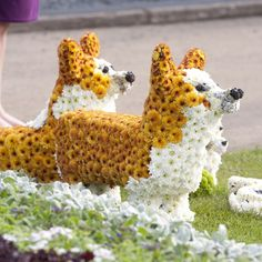 OMG!! @Shamaree Ramirez  I want to see this on your front lawn!