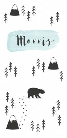 Stoer kaartje met een soort verhaaltje. Goed qua simpelheid en witverdeling. Lijntekeningetjes ook leuk. En beren en bergen uiteraard!