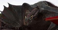 Drogon Game Of Thrones, Game Of Thrones Dragons, Dany's Dragons, Mother Of Dragons, Game Of Thrones Poster, Game Of Thrones Books, Khaleesi, Daenerys Targaryen, Dragon Dreaming