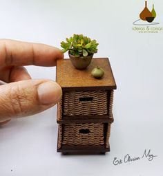 A Gorgeous Example for Miniature Decoration: Colorful Orchid - Unique Balcony & Garden Decoration and Easy DIY Ideas Purple Orchids, White Orchids, Lady Slipper Orchid, Miniature Orchids, Biscuit, All The Small Things, Jade Plants, Mini Plants, Phalaenopsis Orchid