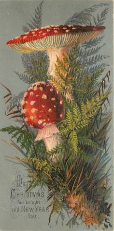 Christmas Red White Polka Dot Mushrooms Olve Green Fern Emboss 1880 Victorian TC | eBay