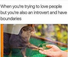 I love you, but please don't crowd by space  For more such memes, musings, and meaningful conversations, please join us at Facebook.com/groups/RefugeSurvivors