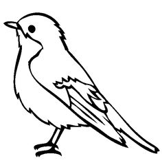 Coloring Picture Of A Bird Pin On Eco Garden Birds Free Printable Coloring Pages For Kids Top 20 Free Printable Bird Coloring Pages Online Birds Pictures For Coloring Robin Coloring Bird Coloring Pages, Online Coloring Pages, Printable Coloring Pages, Coloring Pages For Kids, Kids Coloring, Vogel Clipart, Bird Clipart, Simple Bird Drawing, Robin Vogel