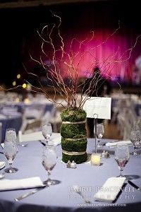 Centerpieces- I like the moss and branches...maybe some taupe ribbon around it.