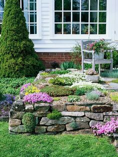 Front Yard Rock Garden. Even if you don't have a naturally rocky site, you can easily create one. In this front yard, a stone wall offers an ideal foundation and border for a variety of low-growing alpine classics, including Aubrieta 'Royal Blue', Phlox subulata, and Potentilla. Gypsophila franzii and Dianthus 'Tiny Rubies' fill crevices between stones and help to integrate the stone wall with the rest of the terrace garden