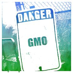 """This links to the Mail Online article: """"Uncovered, the 'toxic' gene hiding in GM crops: Revelation throws new doubt over safety of foods; EU watchdog reveals approval for GM foods fails to identify poisonous gene; 54 of the 86 GM plants approved contain the dangerous gene."""" The article says """"The findings are particularly powerful because the work was carried out by independent experts, rather than GM critics."""""""