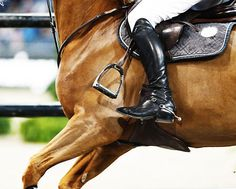 Lost a stirrup. Why riders should learn to ride without them.