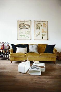 couch + hard wood floor