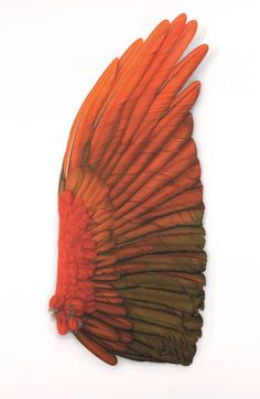 Large Red Wing by Elizabeth Butterworth Red Feather, Bird Feathers, Red Rising, Wings Drawing, Bird Wings, Red Angel Wings, Butterworth, Painting Inspiration, Zentangle