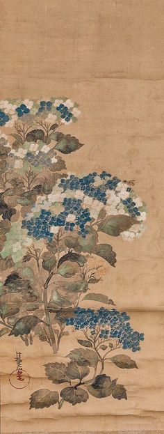 Hydrangeas. Attributed to Ogata Korin. Japanese hanging scroll. Edo Period.