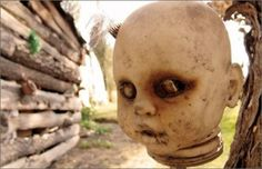 The Island of the Dolls (Isla de las Munecas) sits in the canals south of Mexico City. Their severed limbs, decapitated heads, and blank eyes adorn trees, fences and nearly every available surface.