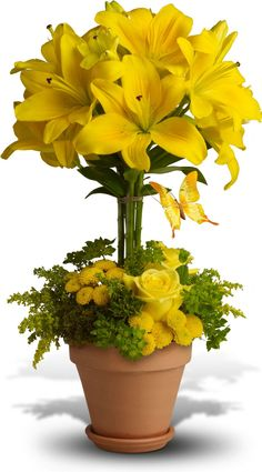 Yellow Fellow Flowers, Yellow Fellow Flower Bouquet - Teleflora.com #arreglosflorales