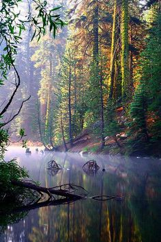 A morning mist over Huntington Lake, California