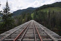 Vance Creek Bridge Shelton WA | Panoramio - Photo of On the Vance Creek Railroad Bridge