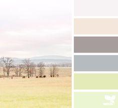 color scape