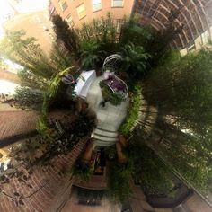 Janice Parker Landscape Architects, established in is a premier landscape architecture firm servicing New York City, the Hamptons and Connecticut. Kips Bay Showhouse, Landscape Architecture, The Hamptons, New York City, Plants, New York, Plant, Nyc, Planets