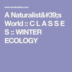 A Naturalist's World :: C L A S S E S :: WINTER ECOLOGY