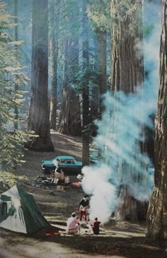I would have loved to have been on this camping trip.