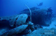 sunken ships and planes | Sunken B17 Airplane Wreck Photograph - Diver Exploring Sunken ...