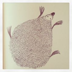 Hedgehog drawing with pen.