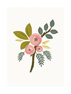 Botanical no.1 Art Print - Limited Edition by Karidy Walker | Minted