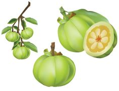 Similar to whenever getting other health supplements, you'll find things you require to do to improve the health rewards of Garcinia cambogia extract.