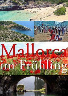 Was kann man im Frühling auf Mallorca unternehmen? Wir verraten euch unsere Top 5!