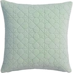 "CB2 August Quilted Mint 16"" Pillow With Feather Insert (3,035 INR) ❤ liked on Polyvore featuring home, home decor, throw pillows, pillows, patterned throw pillows, square pillow insert, plush throw pillows, feather pillow inserts and quilted throw pillows"